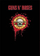 "GUNS N' ROSES - ""Wellcome to the videos"" DVD"